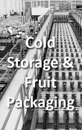 Cold Storage & Fruit packaging